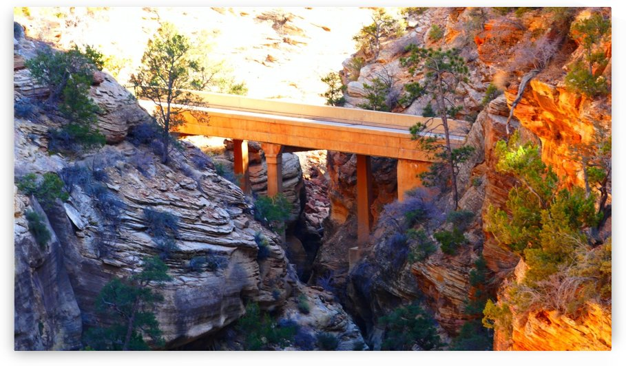Bridge In Zion by TJ Meagher