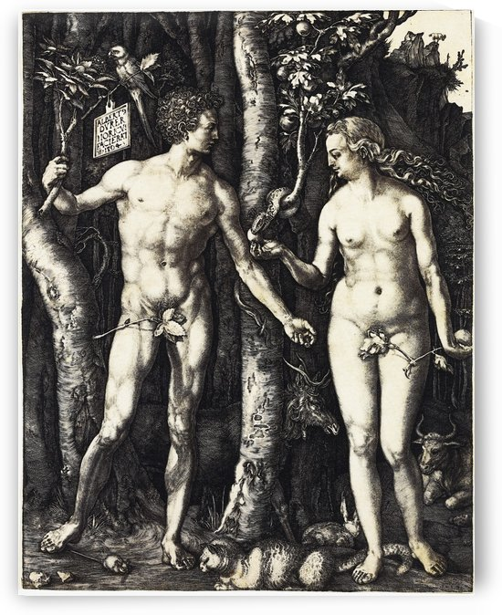 Durer Engravings – Adam and Eve by Classic Painting