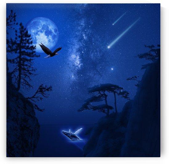 The Starry Night by Rafael Ramirez