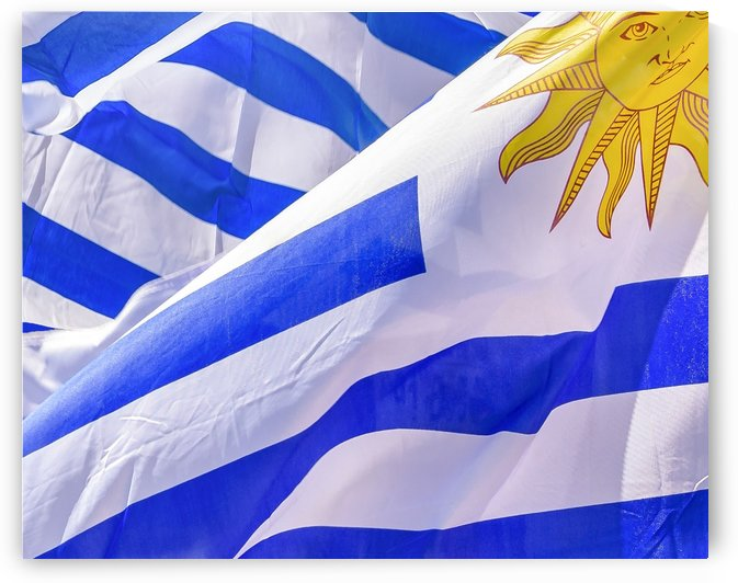 Uruguay Flags Waving by Daniel Ferreia Leites Ciccarino
