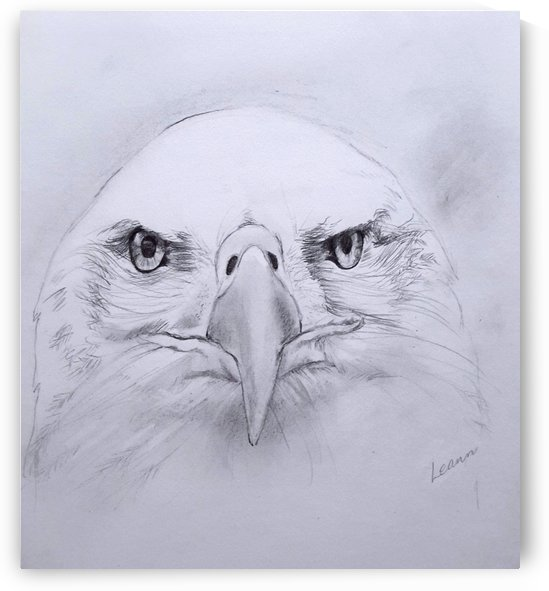 Old Eagle Eye by Shadow and Form