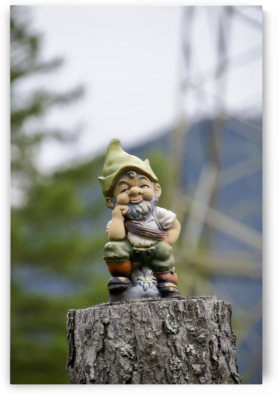 Wisdom of Funny Garden Gnome on Tree Stump is Watching and Smiling at You by Swiss Art by Patrick Kobler