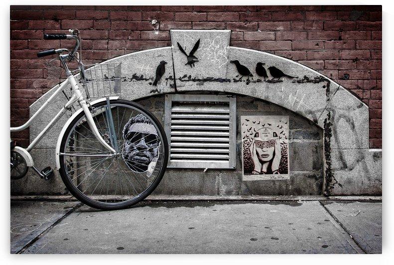 NYC Crows and Bike by Dan Fleury