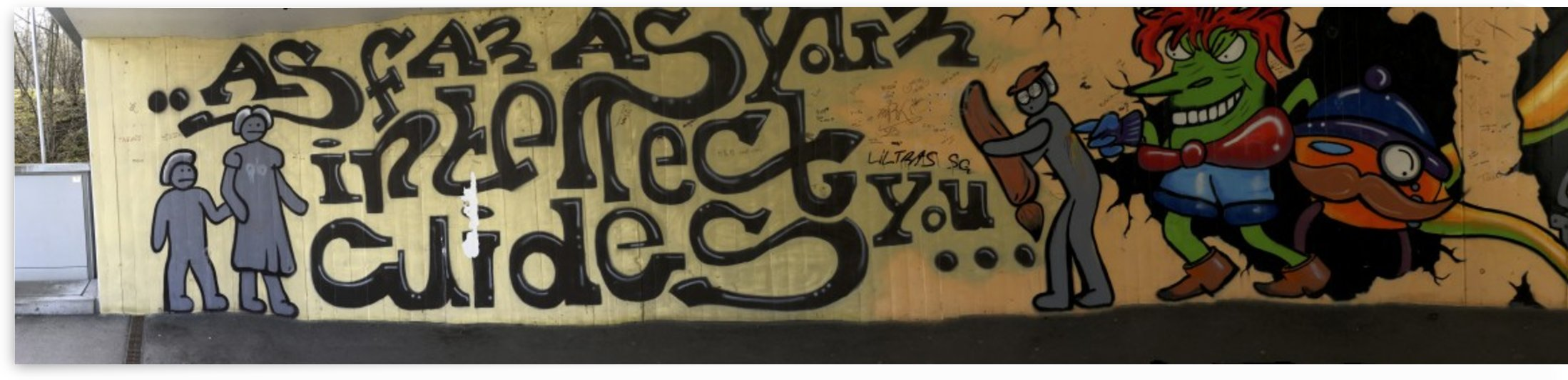 Underpass Creative Graffiti Art I by Swiss Art by Patrick Kobler