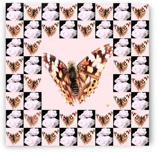 Papillon 01 by Marie et Pascal