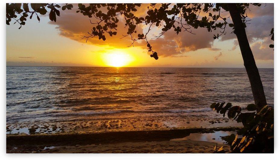 Beach View3 by Michael Brown