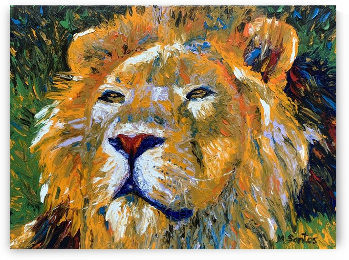 Lion Closeup by Marie Santos - M Santos Art