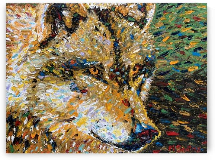 Wolf Closeup by Marie Santos - M Santos Art