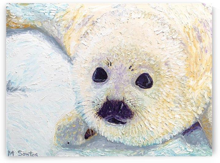 Seal Pup Closeup by Marie Santos - M Santos Art