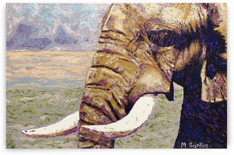Elephant Closeup by Marie Santos - M Santos Art