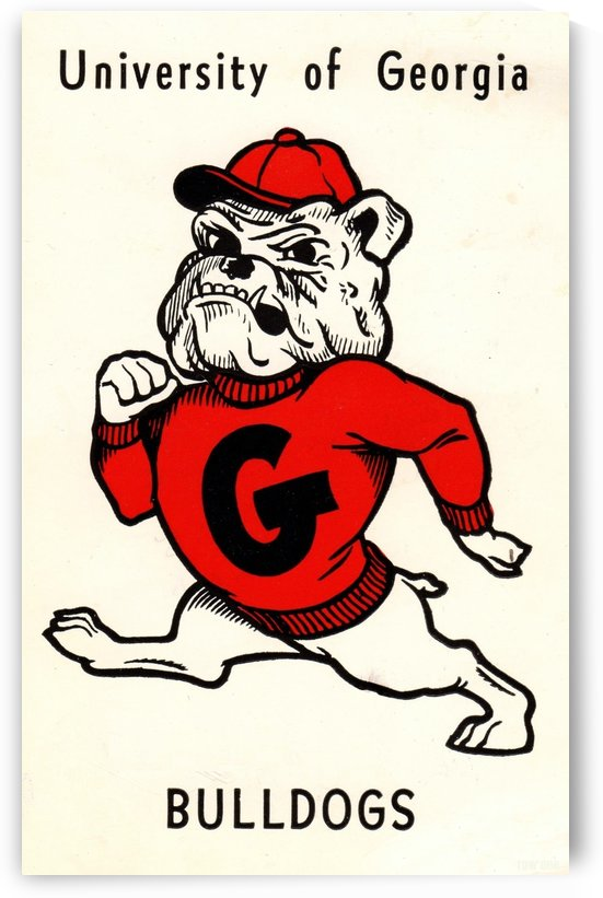 1960s_College_Vintage Georgia Bulldog Art_Row One Brand by Row One Brand