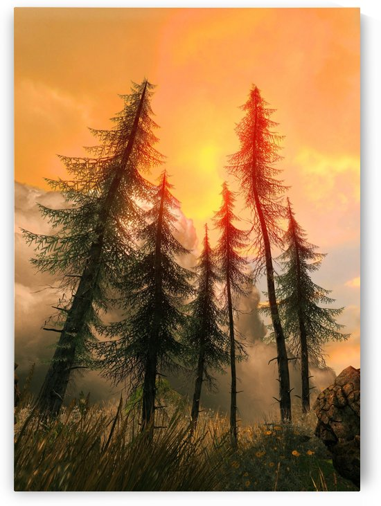Pine Woods Sunset Fantasy by Artistic Paradigms