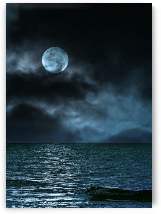 Cloudy Moon Shore at Night by Artistic Paradigms