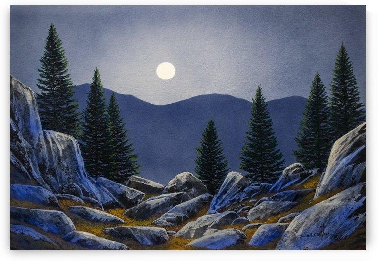 Mountain Mystery by Frank Wilson