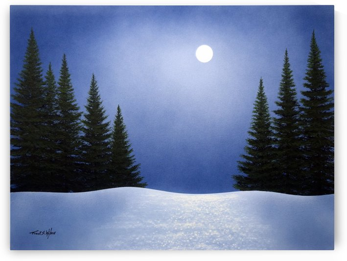 White Spruces In Moonlight  by Frank Wilson