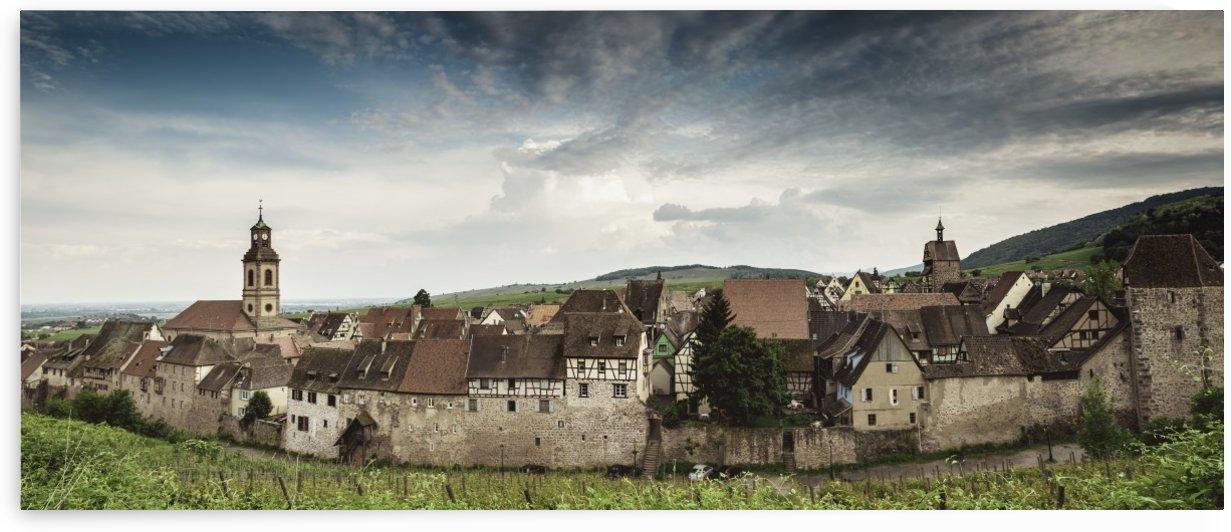 Into the Wine by Sebastian Dietl