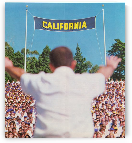 California Memorial Stadium Art_Football Stadium Wall Art_College Football Art Vintage Cal Bears by Row One Brand