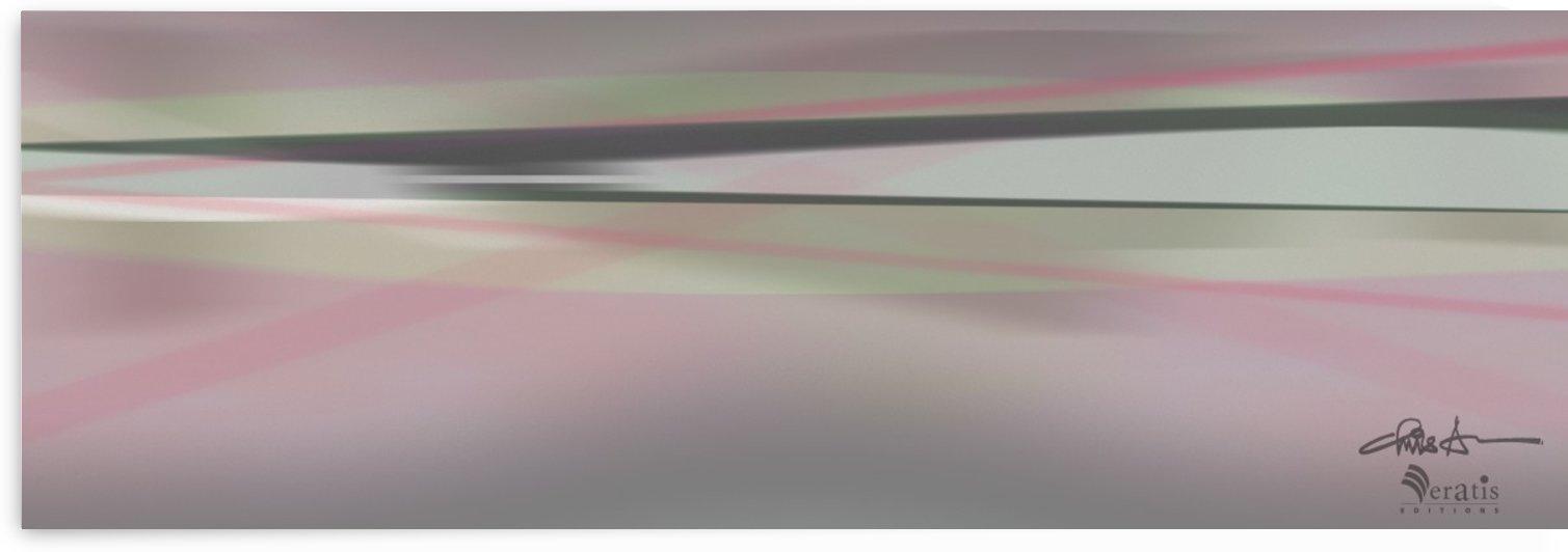 Zip & Zen in Rose 3x1 by Veratis Editions