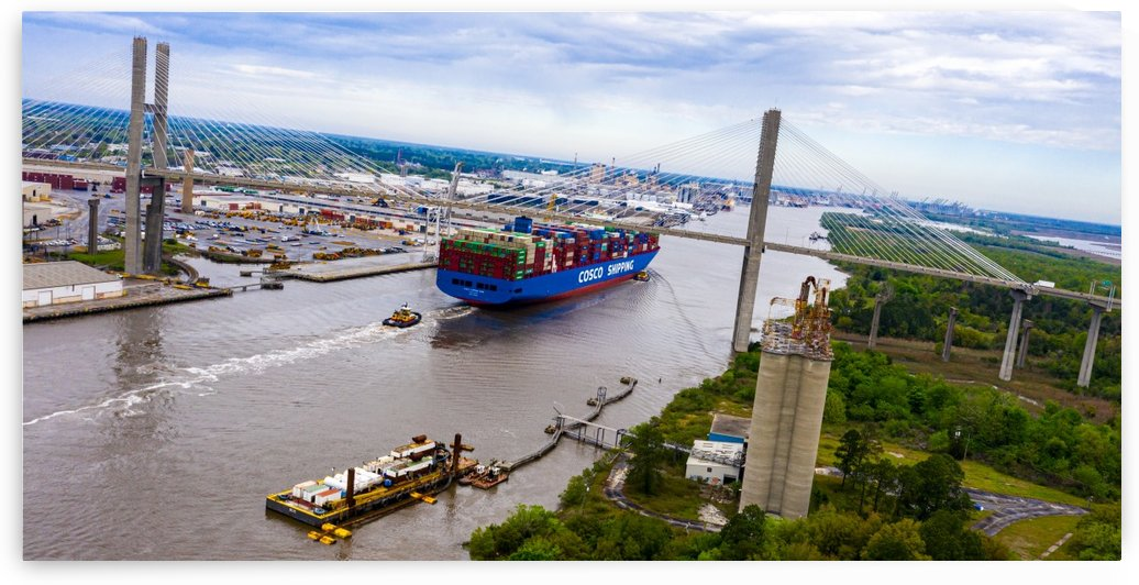 Cargo Ship under Talmadge Bridge   Savannah 0141 by @ThePhotourist