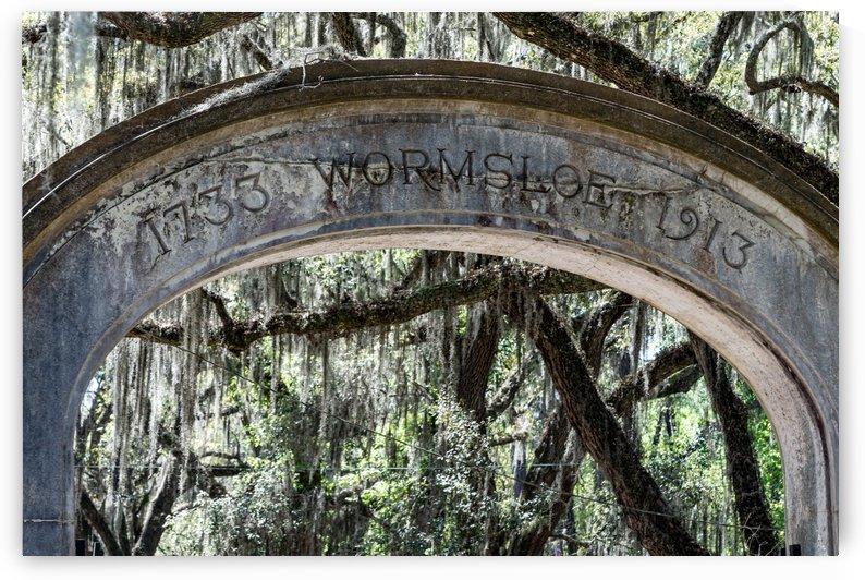 Wormsloe Plantation   Savannah 04453 by @ThePhotourist