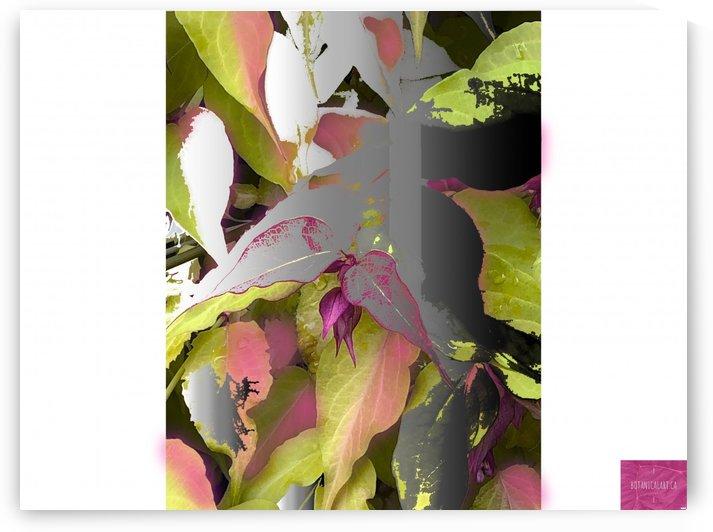 Floating Leaves by BotanicalArt ca