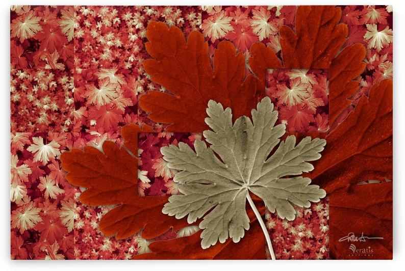 Geranium Leaves in Green & Red 3x2 by Veratis Editions