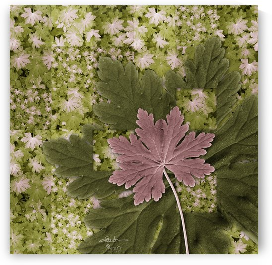 Geranium Leaves in Mauve & Green 1x1 by Veratis Editions