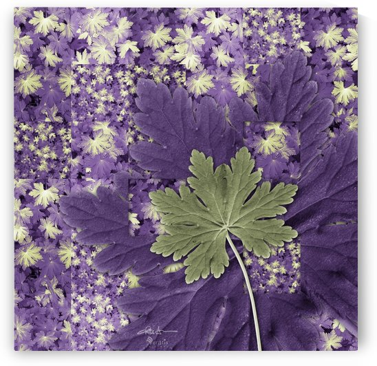 Geranium Leaves in Green & Purple 1x1 by Veratis Editions