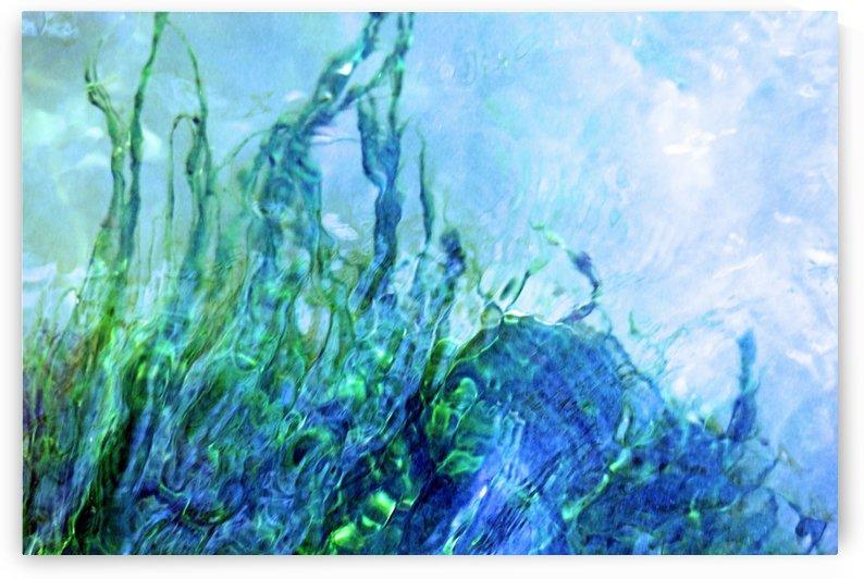 Water Dancing by Deb Oppermann