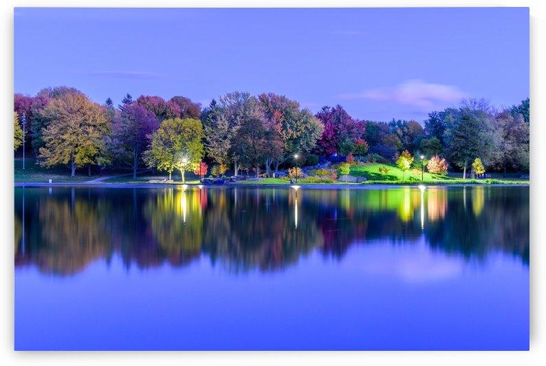 Beaver lake reflection by RezieMart