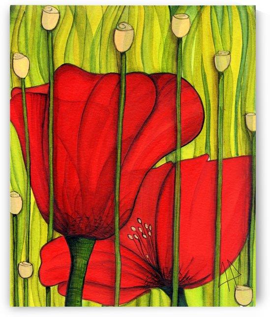 Coastal poppies by CLAUDIA BRANDES