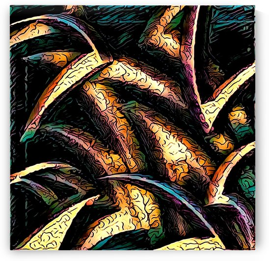 ABSTRACTIONS In Darkness  by James A Brockway