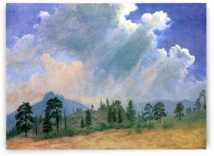 Fir trees and storm clouds by Bierstadt by Bierstadt