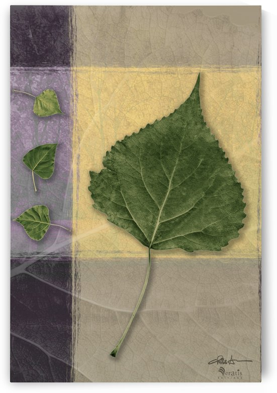 Leaves on Custard & Mauve 2x3 by Veratis Editions