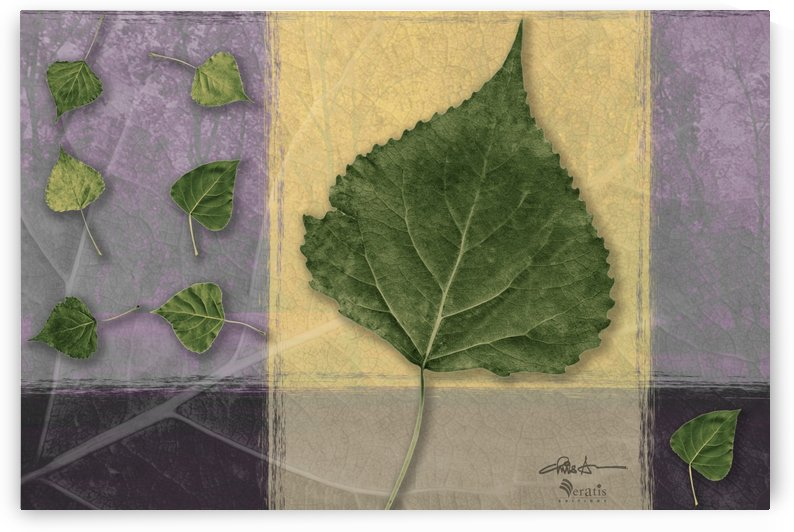 Leaves on Custard & Mauve 3x2 by Veratis Editions