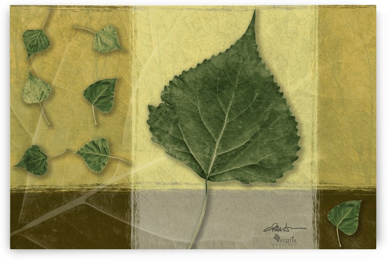 Leaves on Mustard & Citronelle 3x2 by Veratis Editions