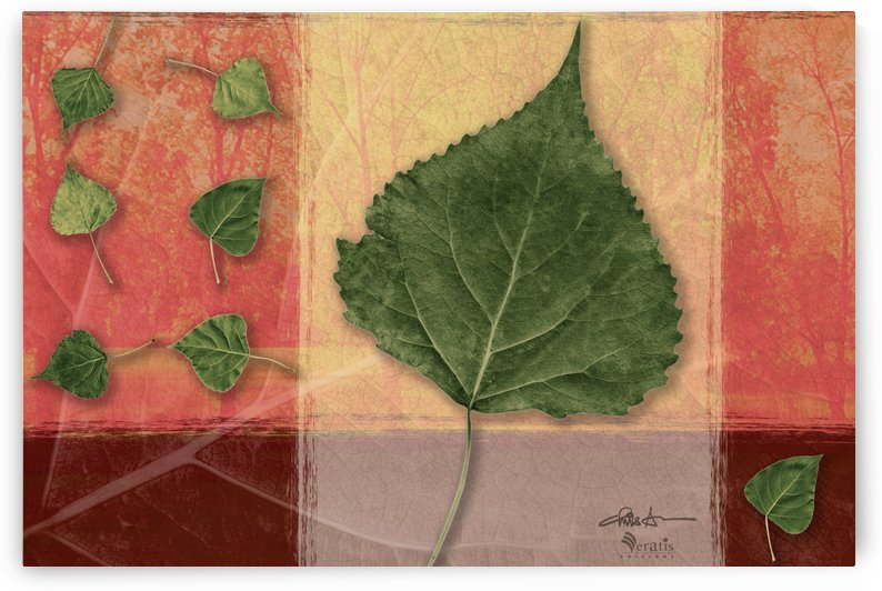 Leaves on Peach & Salmon 3x2 by Veratis Editions