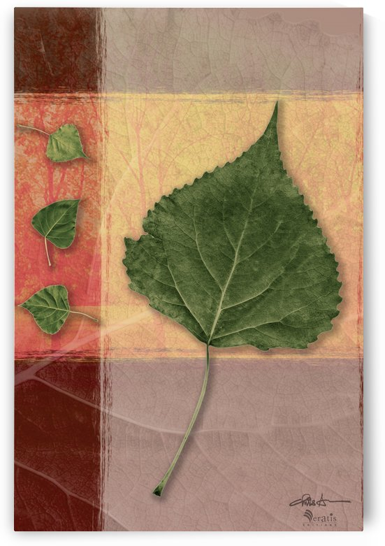 Leaves on Peach & Salmon 2x3 by Veratis Editions