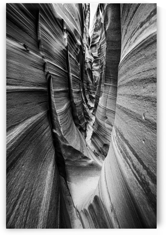 B&W Zebra Slot Canyon II by Sebastian Dietl