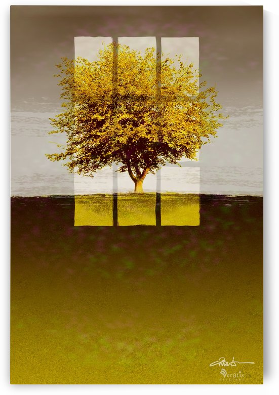 Window on an Amber Tree 2x3 by Veratis Editions
