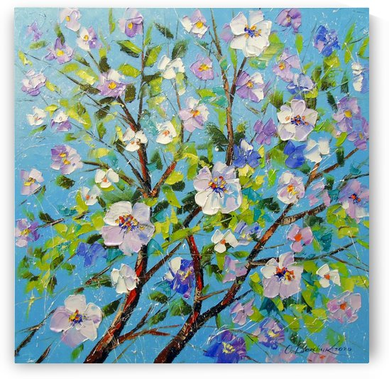 Apple blossom by Olha Darchuk