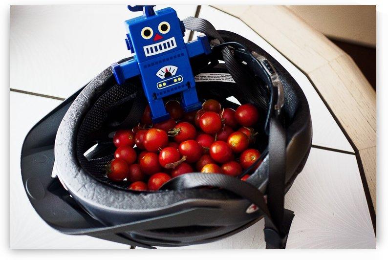 Robot Bike Helmet Tomatoes by Andrew Woolner