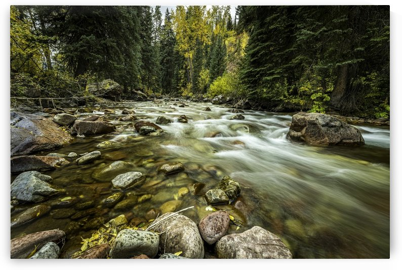 Rocky Mountain Stream by Sebastian Dietl