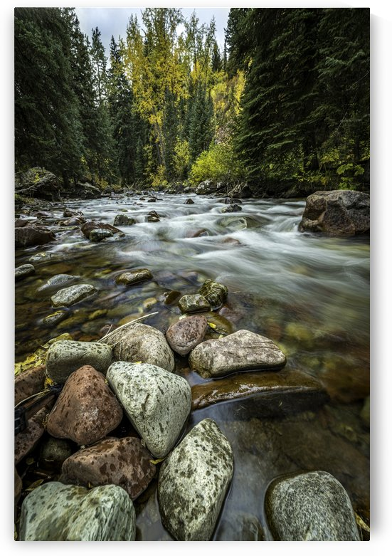 Rocky Mountain Stream II by Sebastian Dietl