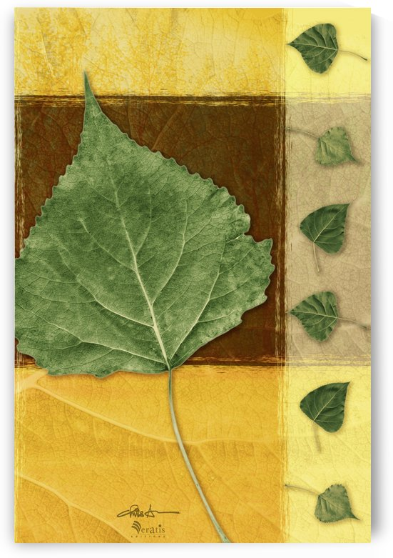 Leaves2 in Chocolate & Amber 2x3 by Veratis Editions