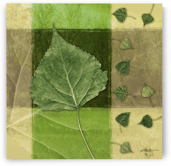 Leaves2 on Forest & Green 1x1 by Veratis Editions