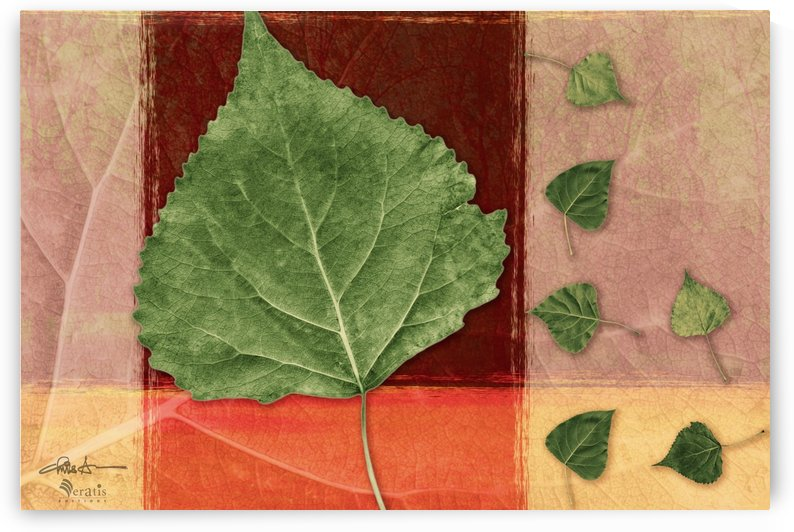 Leaves2 on Sienna & Salmon 3x2 by Veratis Editions