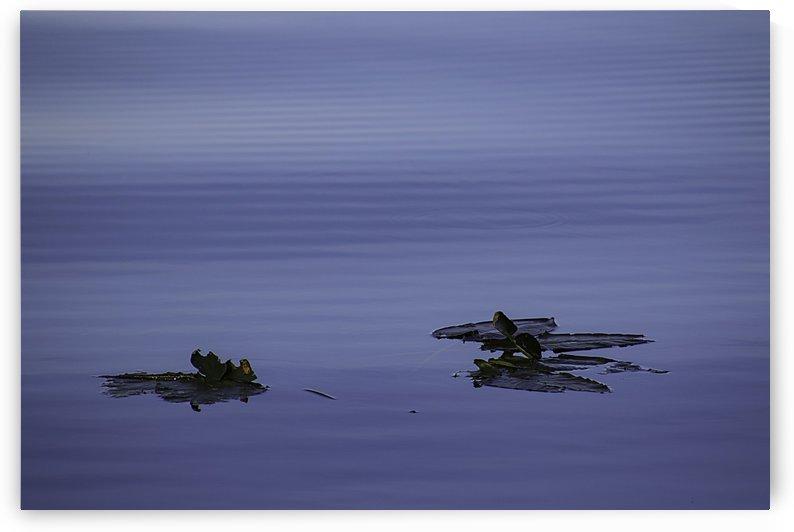 Reflections_Yalaha11 by WilliamMendoza_PHOTO