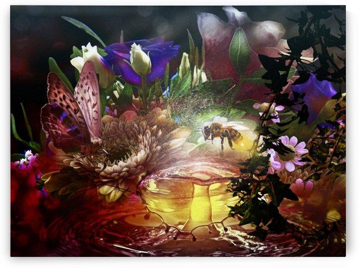 The garden by Elizabeth Berry