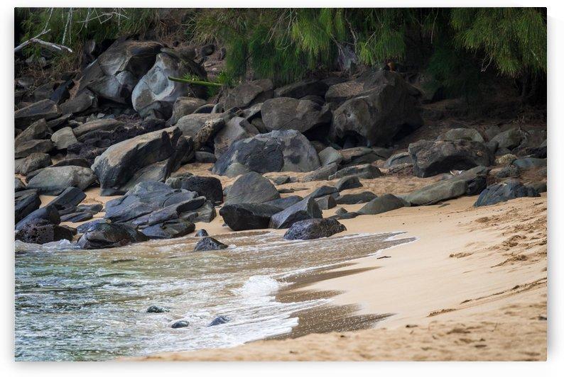 Honolua Bay   Maui Hawaii 1343 by @ThePhotourist